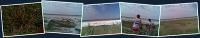 Ver Laguna de Alcahozo