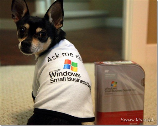 Ask Chico about Windows Small Business Server!