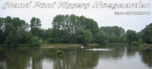 GRAND PONT VISSERS HOEGAARDEN VZW 431822818