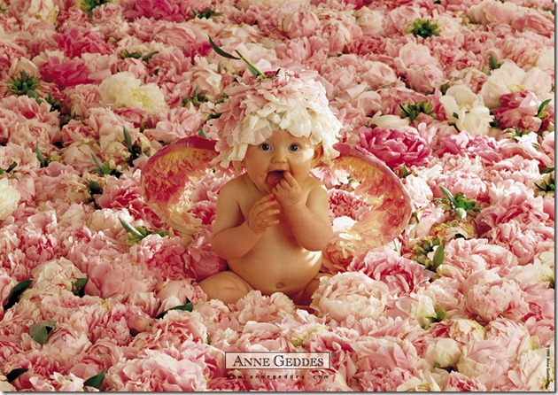 Child by Anne Geddes 03