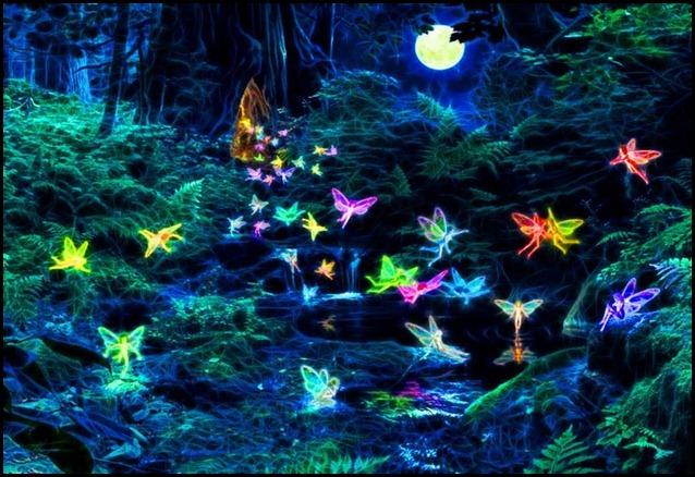 fairy52