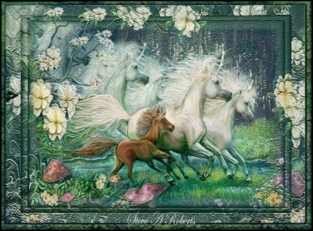 dreams_of_unicorns