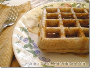 multigrain waffle with syrup 2