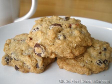 [chocolatechipoatmealcookies6.jpg]