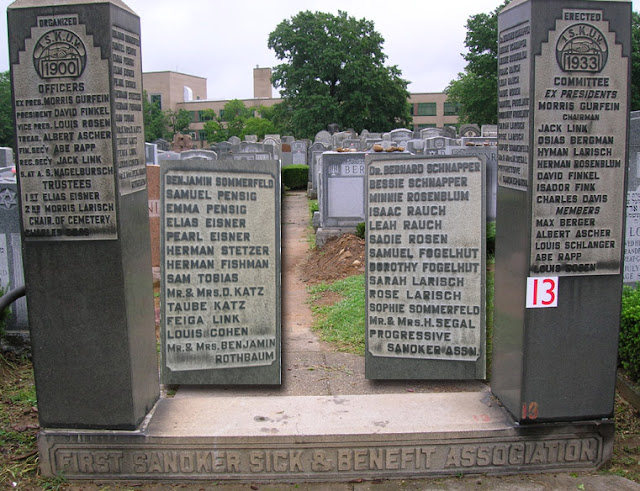 [1st Sanoker Sons & Ben. Society at Mt Hebron Cemetery]
