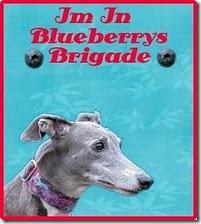 blueberrybrigade