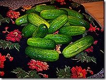 Pickles 014