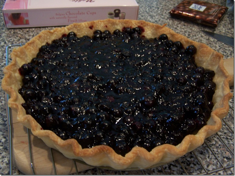 Blueberry Tart 020