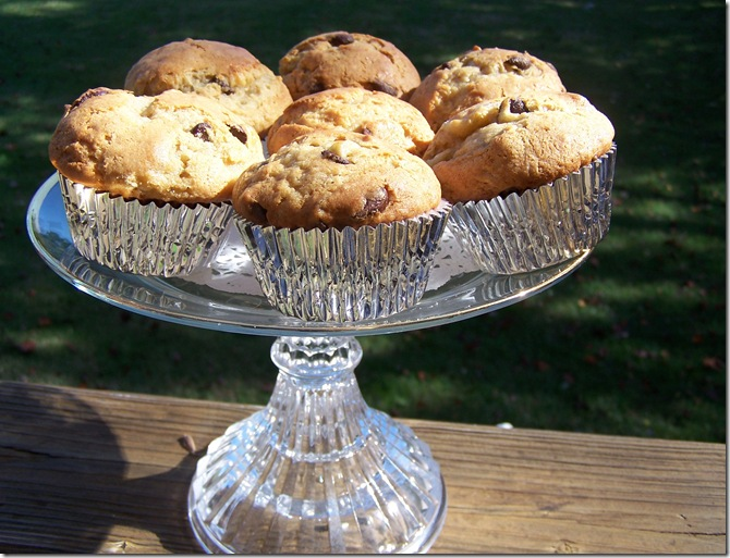 Banana, Chocolate Chip, Peanut Butter, Muffins 032