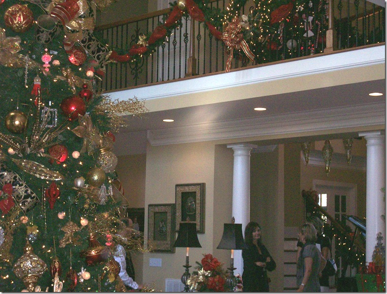 Holiday Home Tour 2010 067