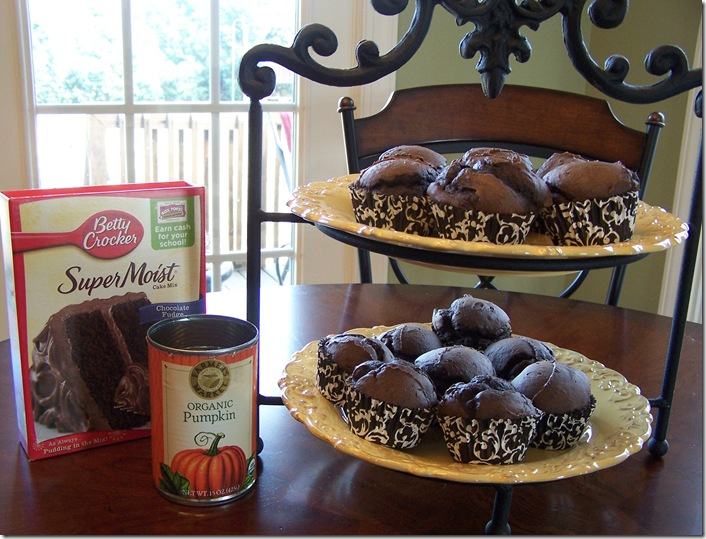 Low Cal Chocolate Muffins 004