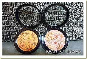 The Body Shop Autumn Smoke & Fire 2010 Collection Pressed Powder Compact in Chestnut and Berry