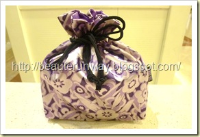 Anna Sui Pouch close up