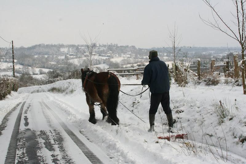 Le  calvados sous la neige... les chevaux s'éclatent! IMG_5126