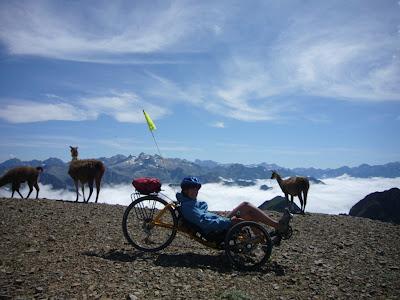 Trike et lamas au pic du Midi de Bigorre