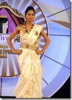 Miss Andhra Pradesh 2010 Contest-sarees (4)