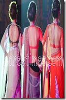 Saree-Blouse-Designs-2010