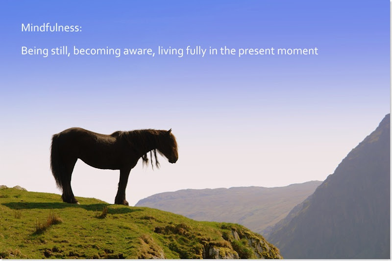 mindfulness is being still, becoming aware, living fully in the present moment