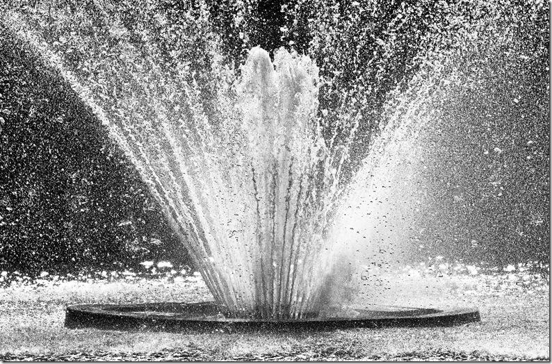 princes quay fountain in hull b&w