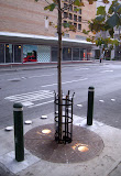 DallasSt Tree with Lights and Bollards.jpg