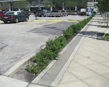 ParkingLotPlanter1000p96_1.jpg