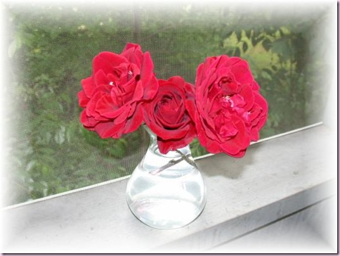 RosesSoft4178