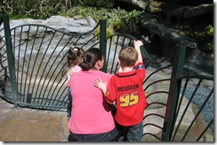 Disneyland-Trip-005
