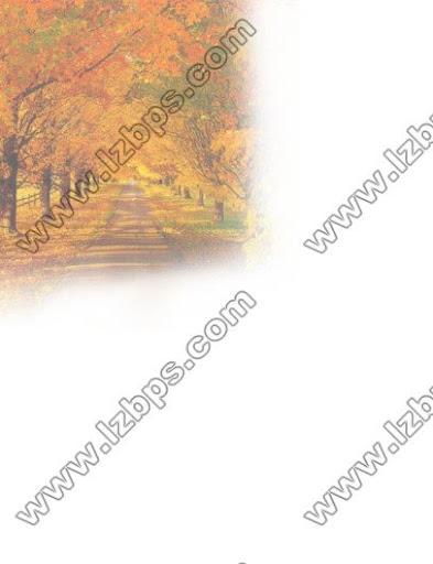 幼儿园主题墙图片四季树