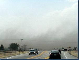 Sand Storm (4)