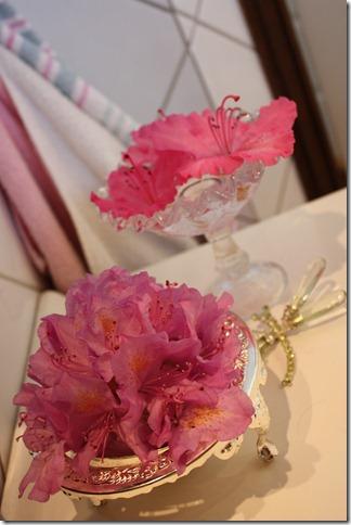 rhododendron til pynt inne