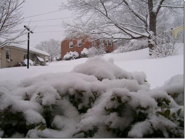 snow-Kev 2010-02-06 021