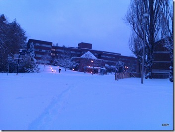 Exeter Uni@ 7am. 20 Dec2010, a date to remember, heaviest & thickest snow I have ever encountered in the UK thus far.