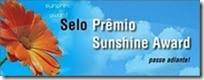 premio_sol_brillante