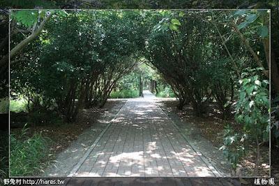 [高雄] 原生植物園