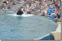May June 2009 vacation216