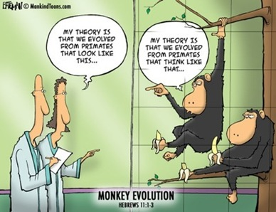 Mankind Toon_Monkey evolution