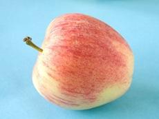 apple (www.123RF.com)