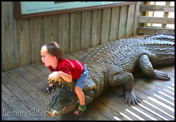 2 year old Crocodile Hunter