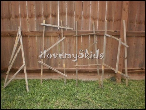 Gardening Trellis for kids