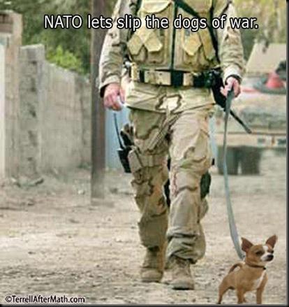 dogsofwary