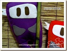 ninjaboys2