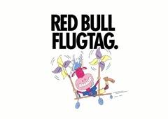 redbullflugtag (1)