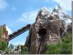 expedition-everest-animal-kingdom
