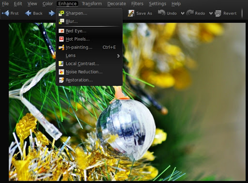 """The """"Enhance"""" menu lets you take care of the commonly found errors in any image like Red-Eye and Hot-Pixels. You can quickly apply corrections to images here."""