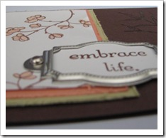Embrace Life sample 2