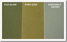 KIWI KISS COMPARISON