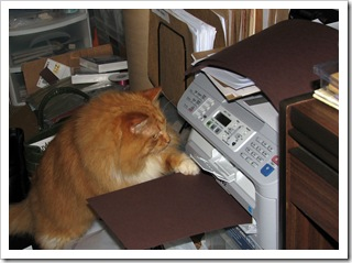 tiger printer 3