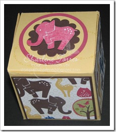 Animal Stories box