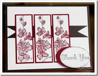 Hamilton Island thank you card