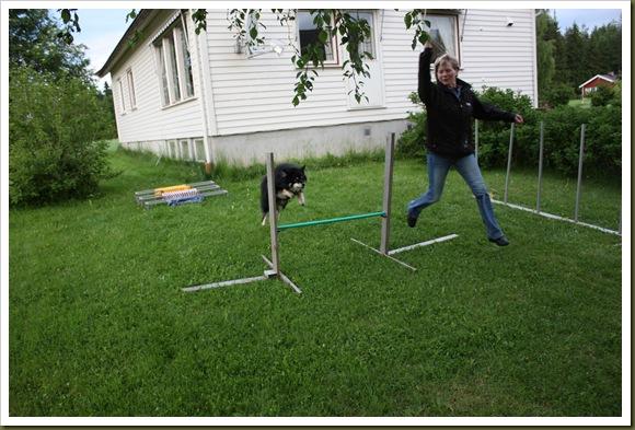agility-trening 022